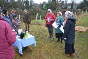 Wassailing the trees