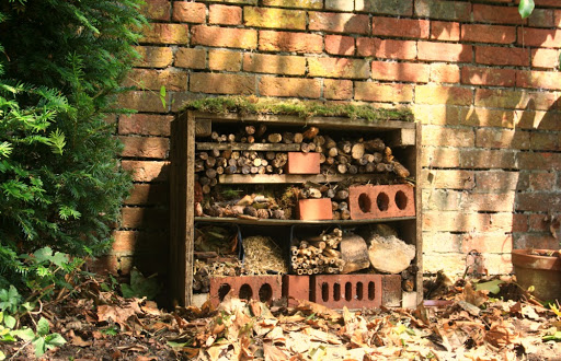 Petersfield Community Garden Bug House 2020